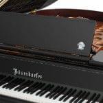 Imagen Piano de cola BÖSENDORFER modelo especial Beethoven detalle frontal