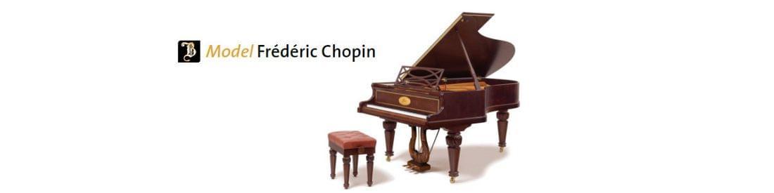 Imagen piano de cola BÖSENDORFER modelo especial Chopin