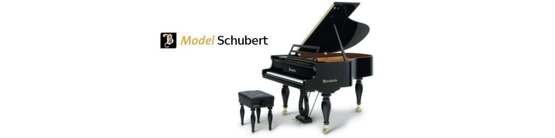 Imagen piano de cola BÖSENDORFER modelo especial Schubert
