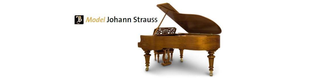 Imagen piano de cola BÖSENDORFER modelo especial Strauss